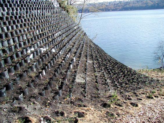 Geogrid Slope Stabilization Google Search Soil Erosion