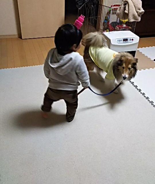 http://ameblo.jp/coonana07/