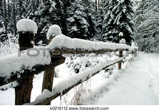 """""""Stock Photo of Winter in the Wood"""" - Winter stock photos available at Fotosearch.com"""