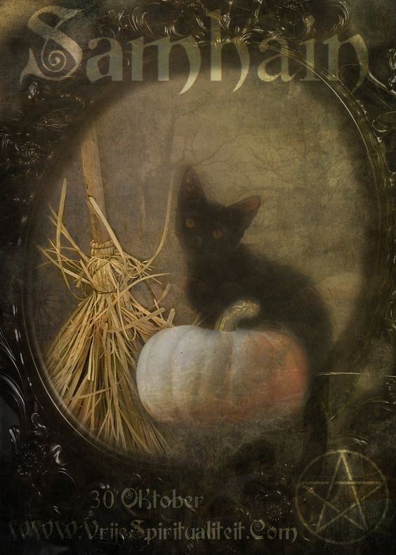 Halloween, Witch, Goblin, Black Cat, Jack-O-Lantern, Bat, Skull, Ghost, Spooky, Full Moon, Pumpkin, Trick or Treat, Autumn, Fall, Haunted, Scarecrow, Magic Potion, Creepy, Spells, Ghouls -  by BiancaVerheijen: