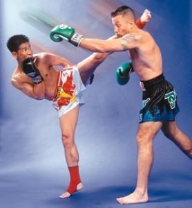 Шорты для кик бокса