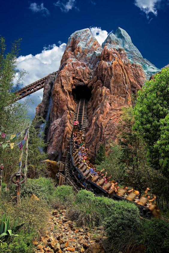 Roller Coaster: Expedition Everest at Animal Kingdom - Disney World, Orlando, FL. the first ride we go on everytime we visit