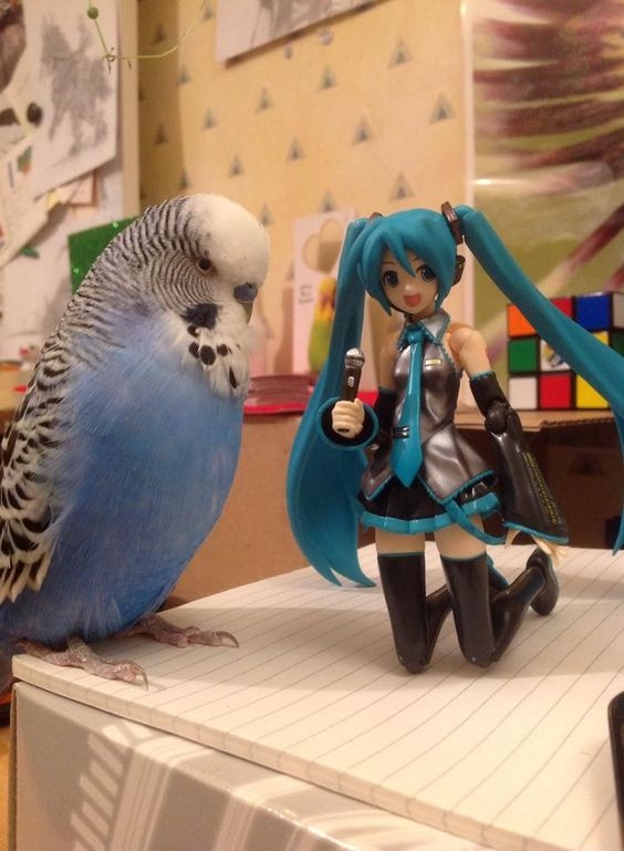 Merlin and Girlfriend at - https://www.facebook.com/photo.php?fbid=10204380461526441