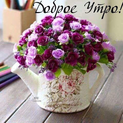 Samye Krasivye Cvety Dlya Vas Kartinki Iz Tem Ok Ru Artificial Flowers Amazing Flowers Flowers
