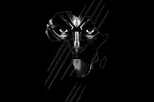 Black Panther Real 3d Poster Wallpaper Black Panther Hd Wallpaper Black Panther Art Panther Art