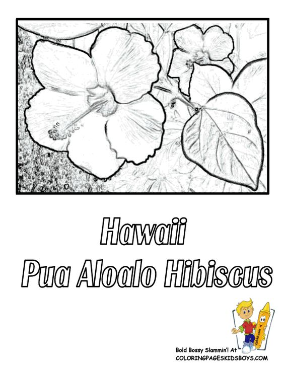 yellow hibiscus coloring pages - photo#29