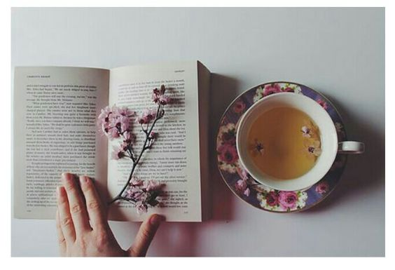 A book/a bunch of flowers/a cup of tea/a group of friends  [Perfect afternoon]
