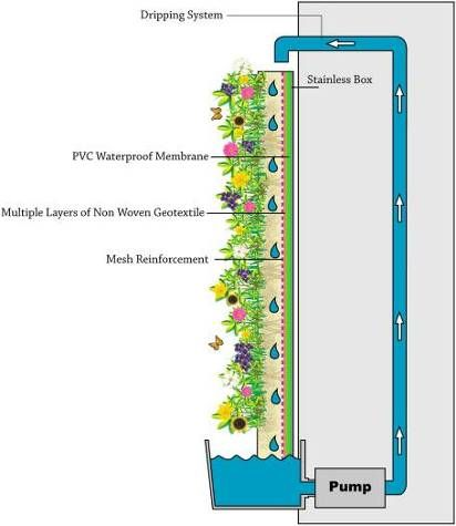 Seek an idea green walls nature design makineco for Vertical garden wall systems