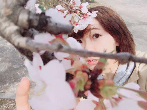 桜の枝と斉藤朱夏