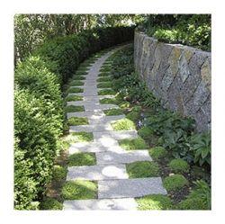 Earth Design garden design and build