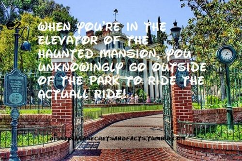 Disneyland Secrets. Ryan won't be happy about #3. No booze in the park? I'm in trouble.