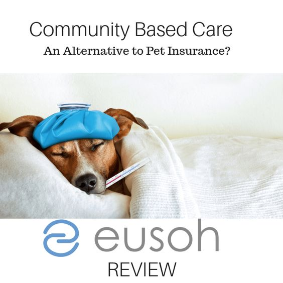 Community Based Care An Alternative To Pet Insurance Eusoh Review Pet Insurance Reviews Pet Clinic Pet Care Logo
