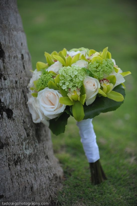 cream roses, green orchids, white/green hydrangeas