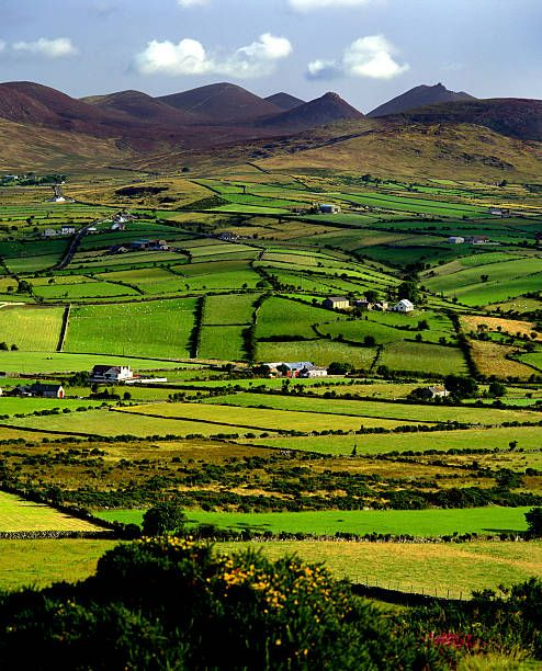 The Mountains Of Mourne County Down Northern Ireland Ireland Landscape Ireland Landscape Nature Belfast Northern Ireland
