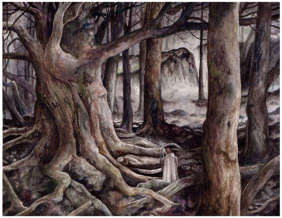 Le Sentier des arbres morts 1066896863689c45b0c038a08ff148b2