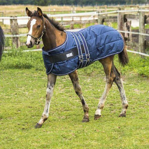 Norton Foal 200g Doudoune Le Rug