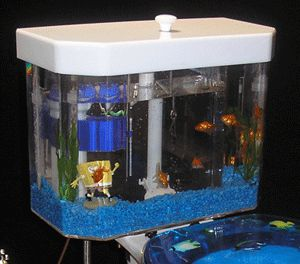 I Personaly Feel Fancy Should Replace All Toilets In The House With This One Cool Fish Tanks Cool Toilets Aquarium