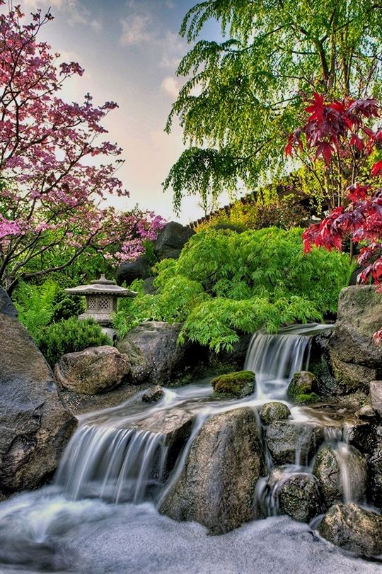 1079c6557c95a113eb2cecd9c35ec763 - Anderson Japanese Gardens Rockford Il Wedding