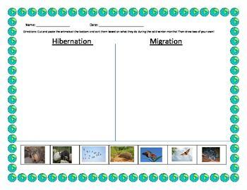 hibernation migration sort kindergarten pinterest activities bird migration and notebooks. Black Bedroom Furniture Sets. Home Design Ideas