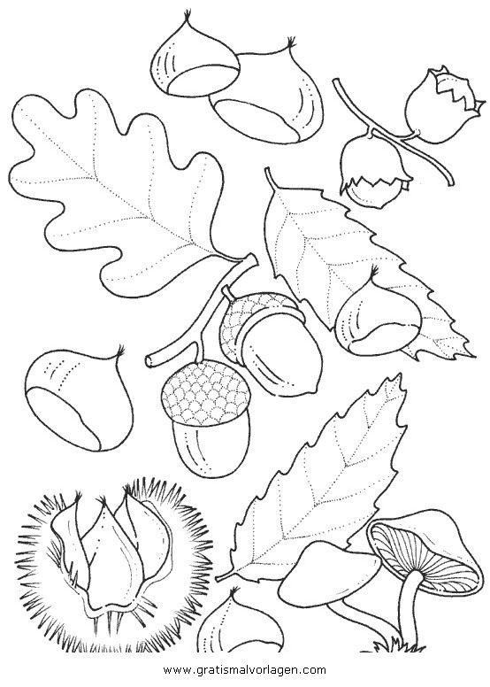 Gratis Malvorlage Kastanien 3 In Herbst Natur Zum Ausdrucken Und Ausmalen Malvorlagen Herbst Malvorlagen Zum Ausdrucken Ausdrucken