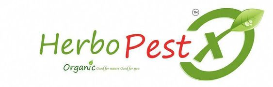 Herbo Pest X Presents Roach Free Repellent Lizfree Repellent Bugfree Repellent Ratfree Repellent Mosquitofree Diy Pest Control Termite Control Pest Control Supplies