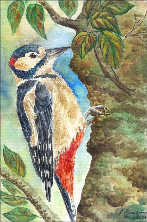Original Aquarell Bild Vogel Buntspecht Natur Tier Wald Baum Watercolour Painting Bird Woodpecker Nature Animal Forest Tree