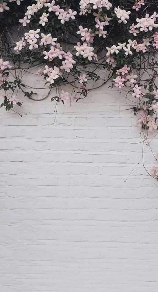 Aesthetic Pink Flower Wallpaper Iphone
