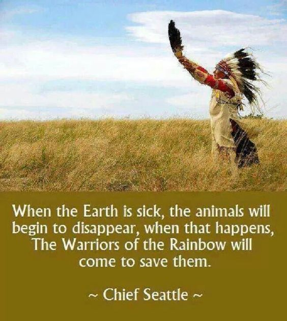 Chief Seattle...the Earth Is Sick,,,