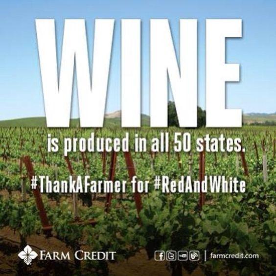 Wine #wine #winefacts #ag