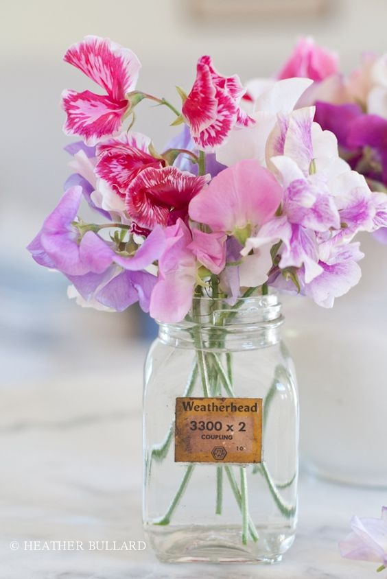from @DIYWeddingPlanning on fb These garden variety sweet peas are pretty and romantic. You can either grow them yourself or buy them from a garden centre.