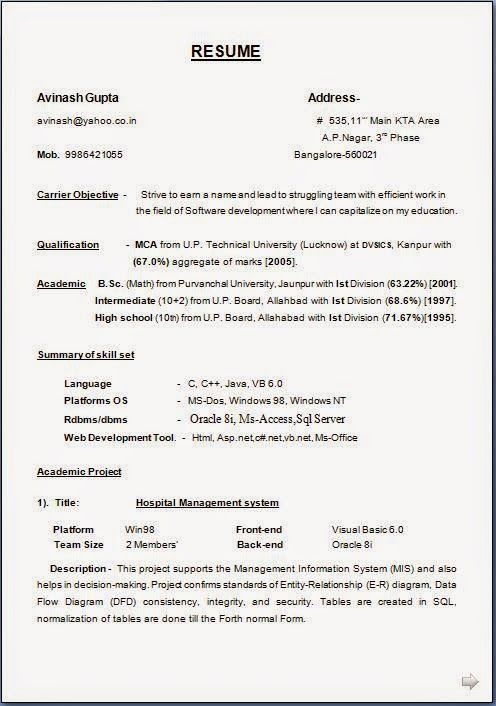 make - How To Make Professional Resume