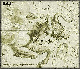 Sterntaufe im Stier  Info: www.sterntaufe-express.de  www.sternpate.de