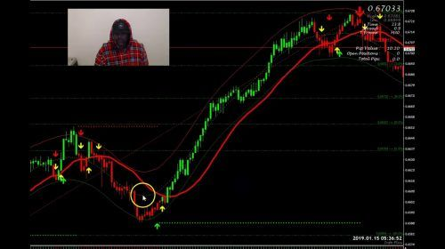 Forex Live Trade Over 100 Pips In 1 Day Forex Trading