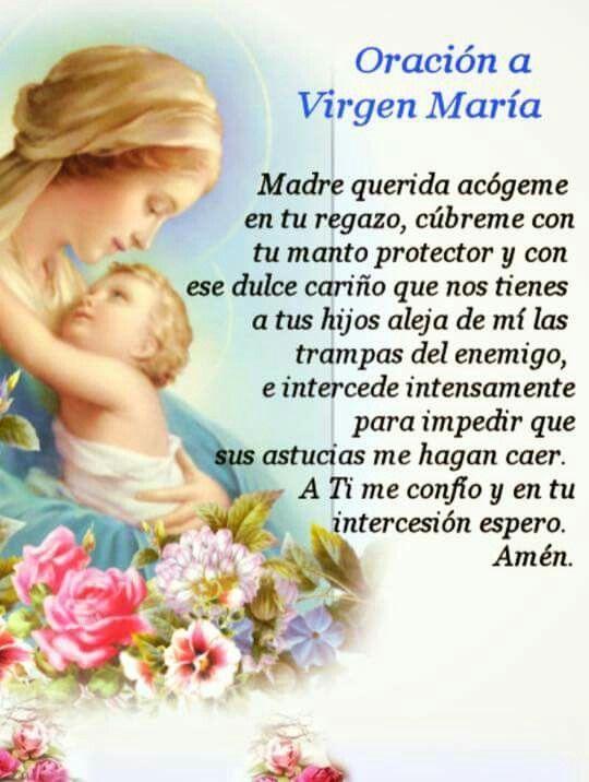 Oracion A La Virgen Maria Para Que Te Cuide Y Te Protega Frasesdebendición Jesus Dios Peticion Bendici Libro De Oraciones Oraciones Oraciones Catolicas