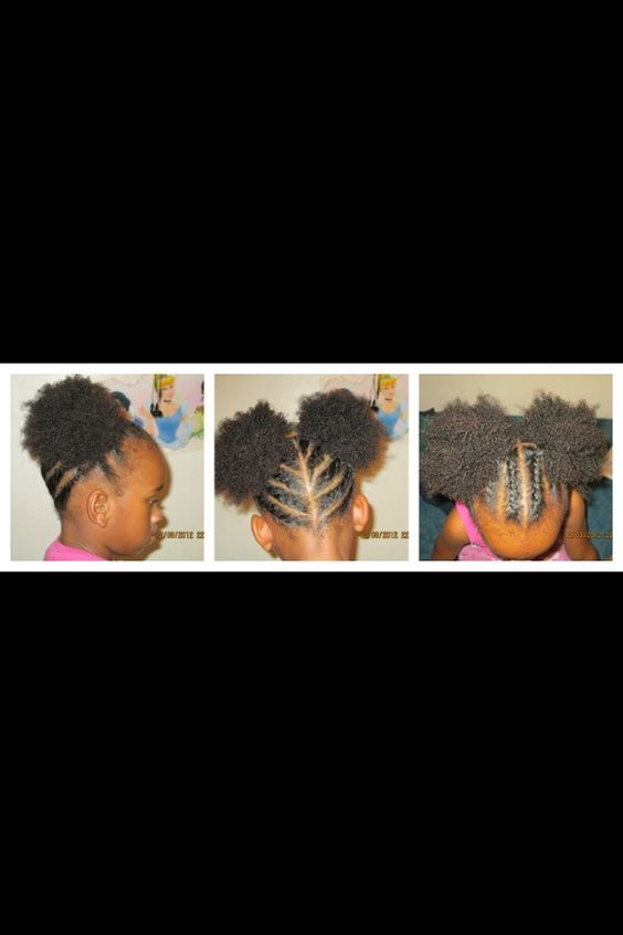 Braided Into 2 Afro Puffs Hairstyles For Emani