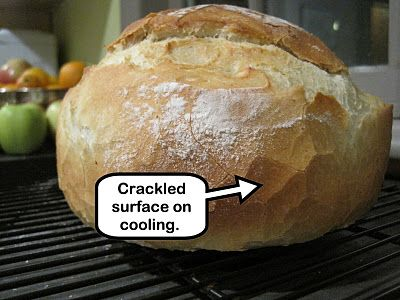 Weber_cam - the applied art of grilling, with a side dose of magical bread