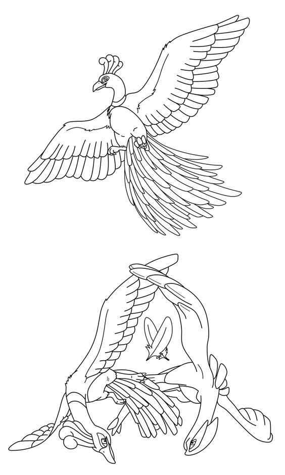 Collab Between Me And Making Coloring Pages For The Sky Temple Link Full Size Pics Can Be Found On Lugia Ho Oh Lineart