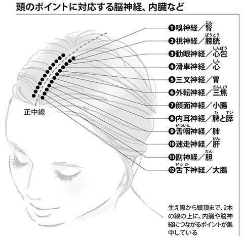 """腰痛の原因は""""敏感な脳""""!頭をもんで全身をほぐす「前頭部ほぐし」の ..."""