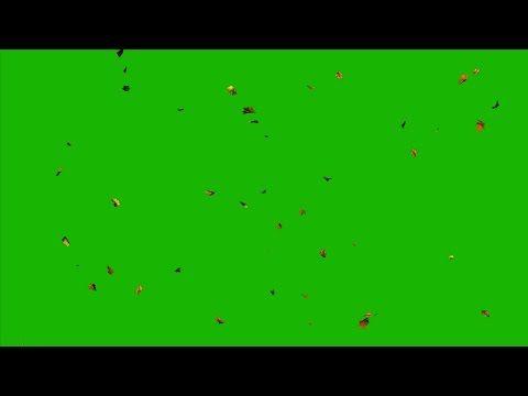 4k Falling Leaves Green Screen Autumn Leaves Uhd Youtube Greenscreen Green Screen Video Backgrounds Motion Blur