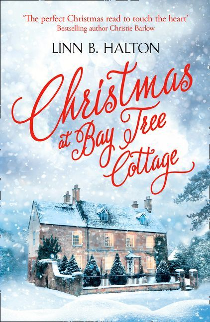 'The perfect Christmas read to touch the heart' Bestselling author Christie BarlowThe countdown to Christmas is usually a magical time, but Elana James...