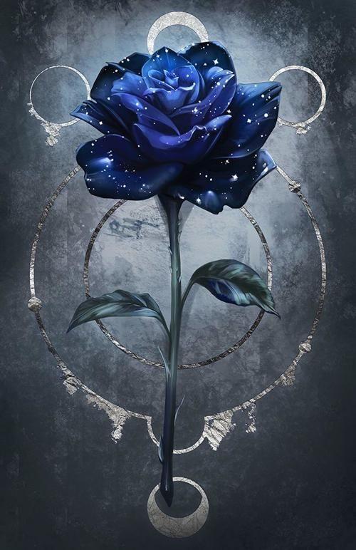 Fondos De Pantalla Para Celular Rose Art Blue Roses Wallpaper Flower Phone Wallpaper