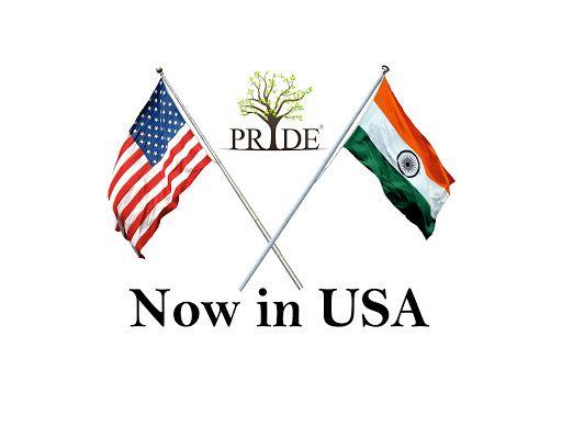 Next Step To Success Now Pride In Usa Digital Marketing Company Digital Marketing Event Management