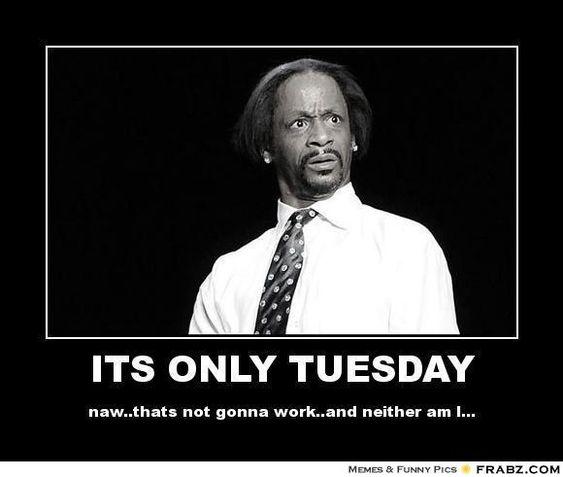 Tuesday Memes Google Search Tuesday Meme Funny Tuesday Meme Tuesday Humor