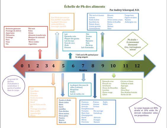 Échelle de Ph des aliments : acide / neutre / alcalin