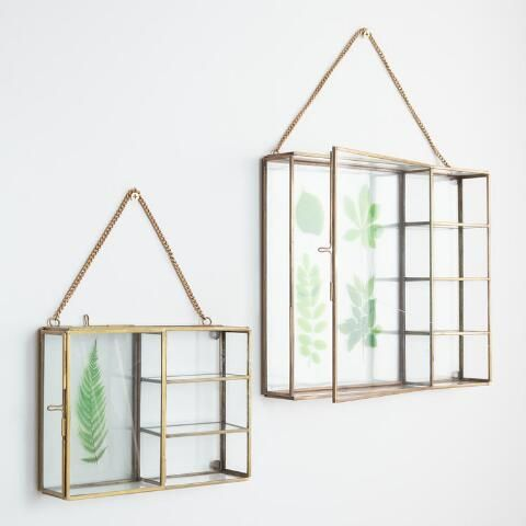 Glass And Brass Reese Curio Shadow Box Frame Glass Shadow Box Shadow Box Frames Box Frames