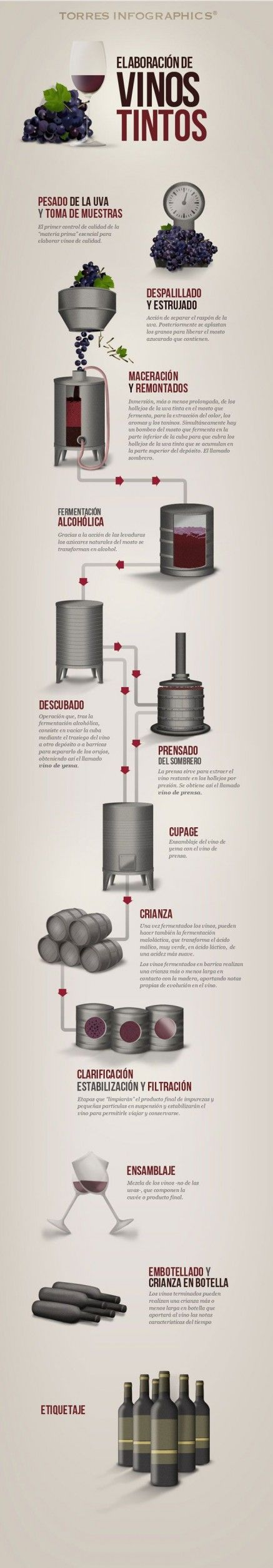Elaboración de vinos tintos