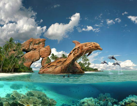 Dolphin paradise http://fc-foto.de/24080801