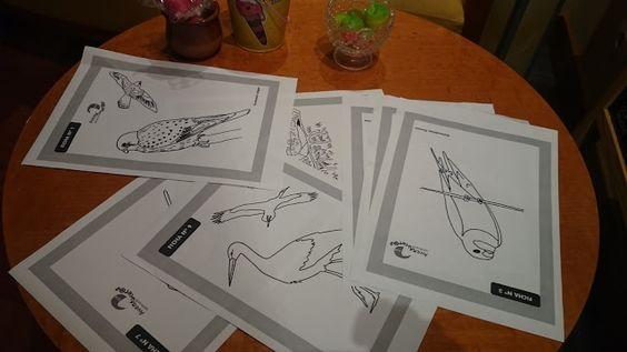 Escapada Rural en Sepúlveda: Día de las Aves en @Vadodelduraton #Sepúlveda