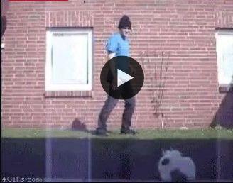 O cara chamou o gato pra briga e o gato foi, mais de repente! o gato  vela um nocaute.