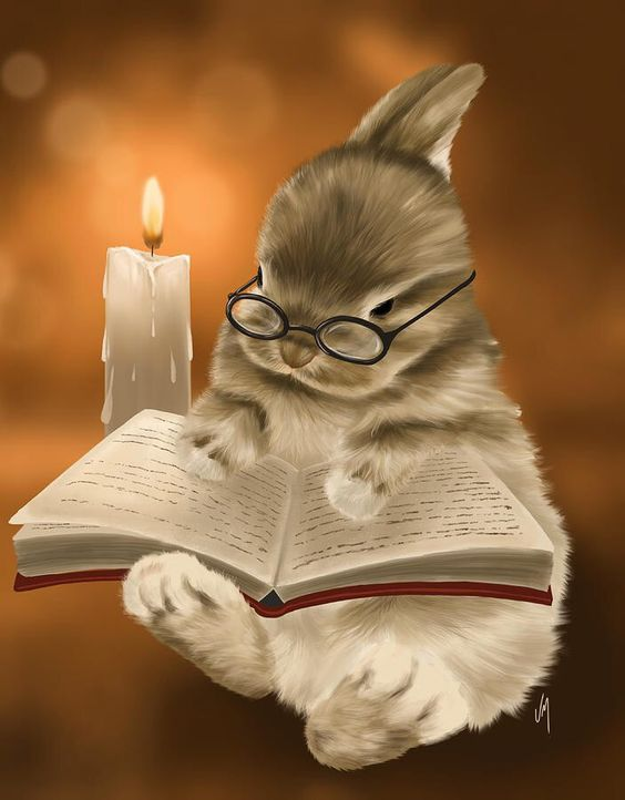sweetly cute book reading bunny